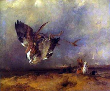 A águia na chuva